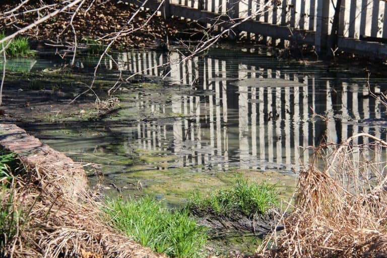Vaalrivier-rioolprobleem lankal 'n nasionale krisis