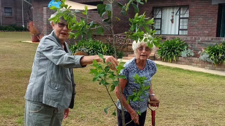 Boomplantmaand: AfriForum dra by tot 'n groener toekoms