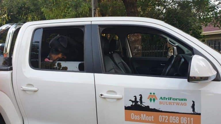 AfriForum Oos-Moot-tak tree vinnig op en vang betreder