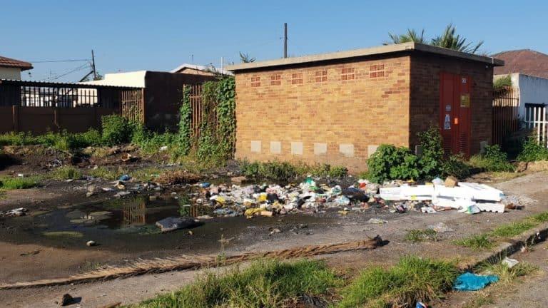 AfriForum se Springs-tak hou skoonmaak-aksie