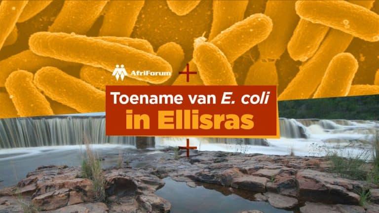 Toename van E. coli in Ellisras