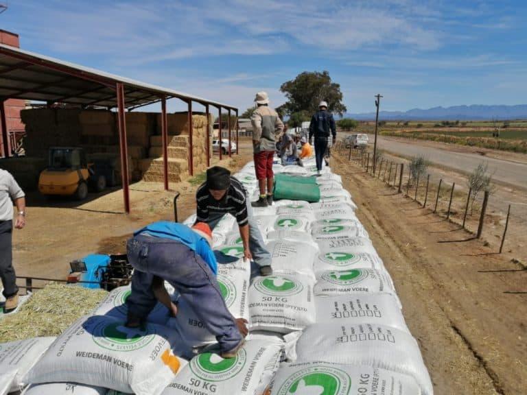 AfriForum en Saai skenk voer aan boere van Volmoed