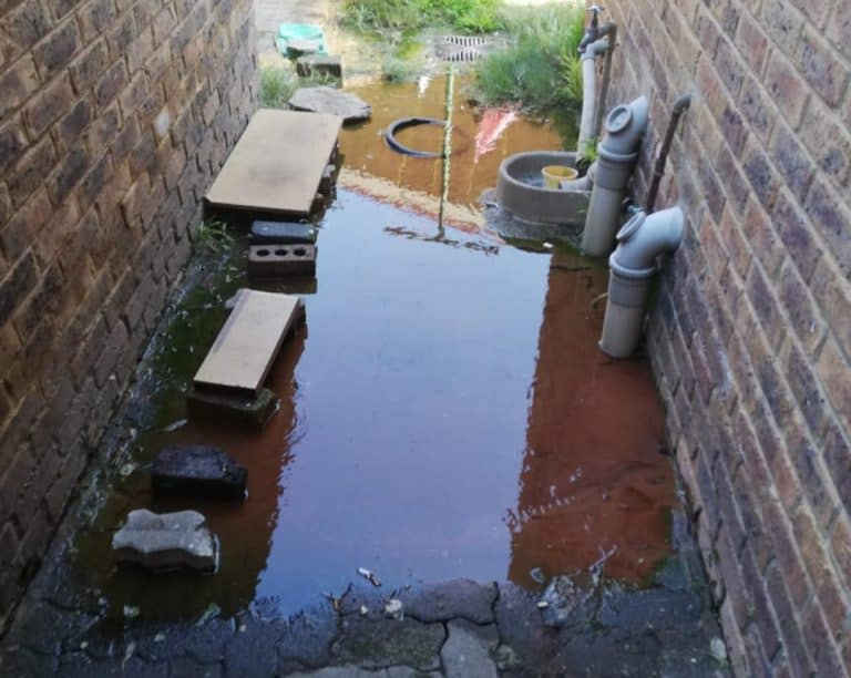 AfriForum's Brakpan branch helps with repairs at Tweedy Park