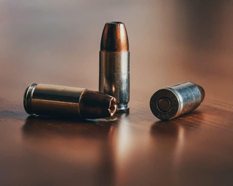 AfriForum welcomes directive regarding renewal of firearm licences