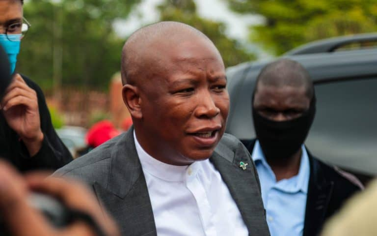Malema, Ndlozi assault hearing to continue tomorrow