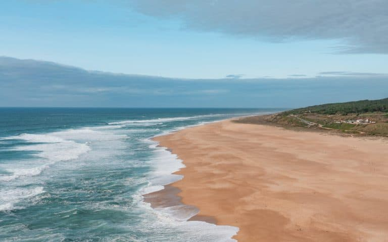 NEW COVID-19 REGULATIONS THAT LIMIT ACCESS TO BEACHES ARE UNCONSTITUTIONAL