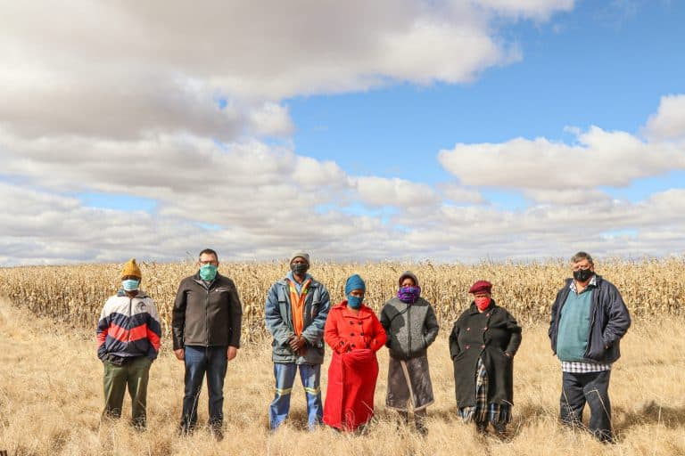 JOINT AGRICULTURAL DEVELOPMENT PROJECT HARVESTS FIRST MAIZE CROP