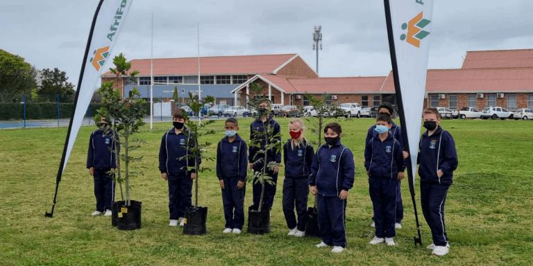 AfriForum se Port Elizabeth-tak plant bome by laerskole